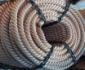 迪尼玛牵引绳